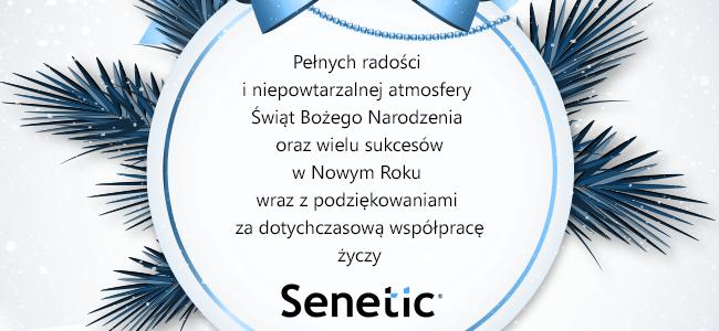 Wesołych Świąt 2014 życzy Senetic!